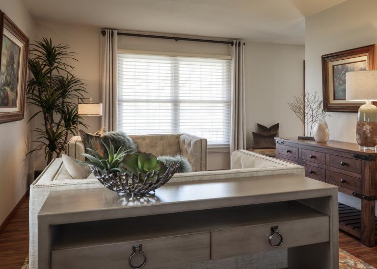 Sophisticated Transitional side room